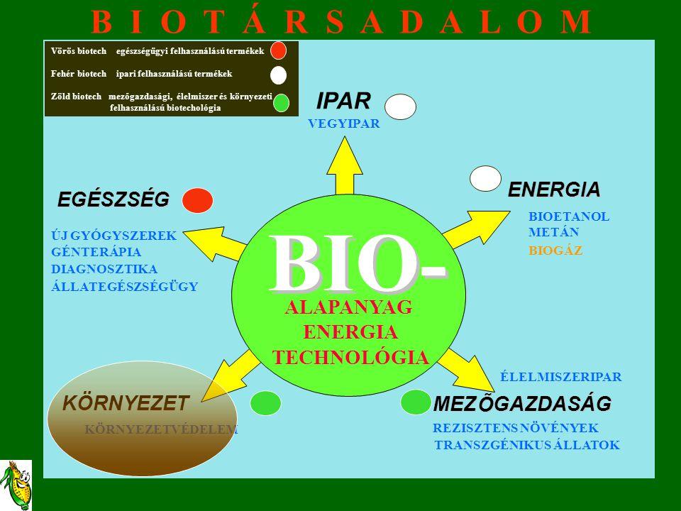 BIO- BIO- B I O T Á R S A D A L O M IPAR ENERGIA ENERGIA EGÉSZSÉG