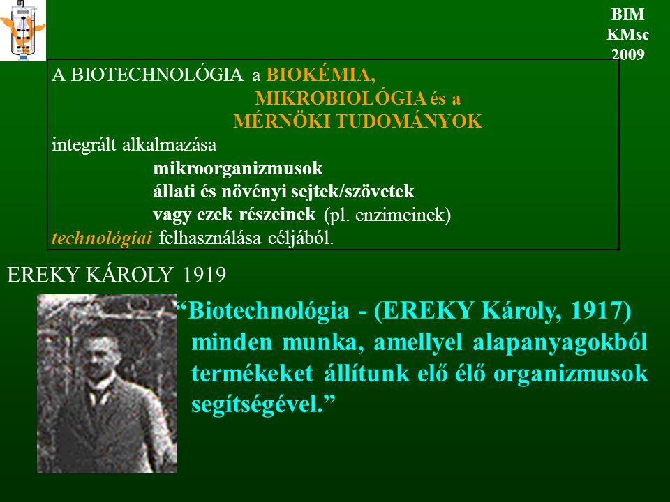 BIM KMsc 2009. A. BIOTECHNOLÓGIA. a. BIOKÉMIA, MIKROBIOLÓGIA és a. MÉRNÖKI TUDOMÁNYOK. integrált alkalmazása.