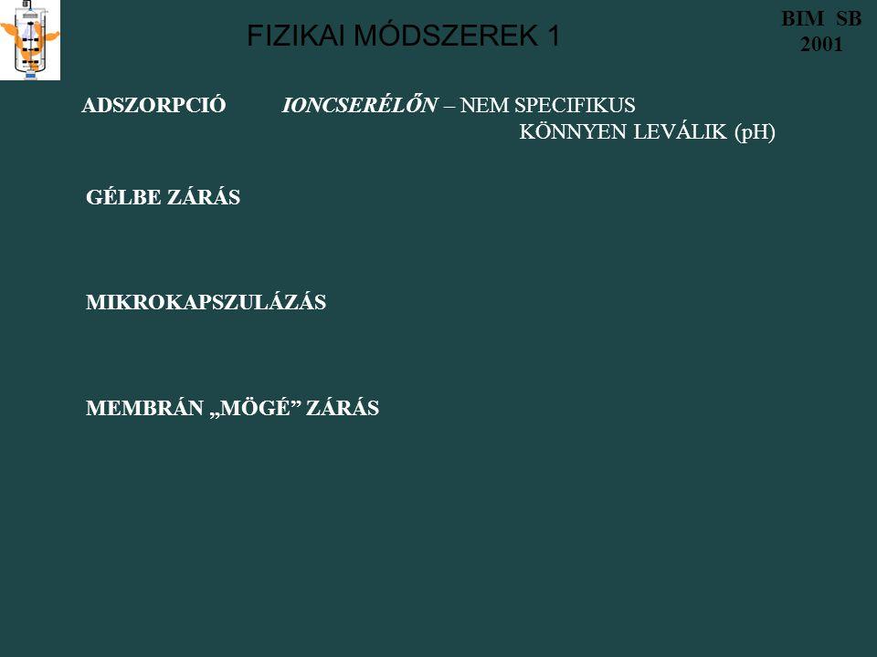FIZIKAI MÓDSZEREK 1 BIM SB 2001