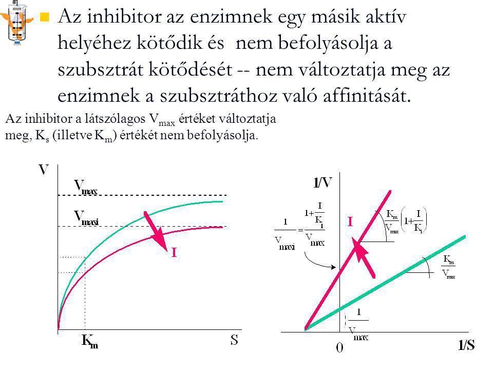 Az inhibitor az enzimnek egy másik aktív helyéhez kötődik és nem befolyásolja a szubsztrát kötődését -- nem változtatja meg az enzimnek a szubsztráthoz való affinitását.