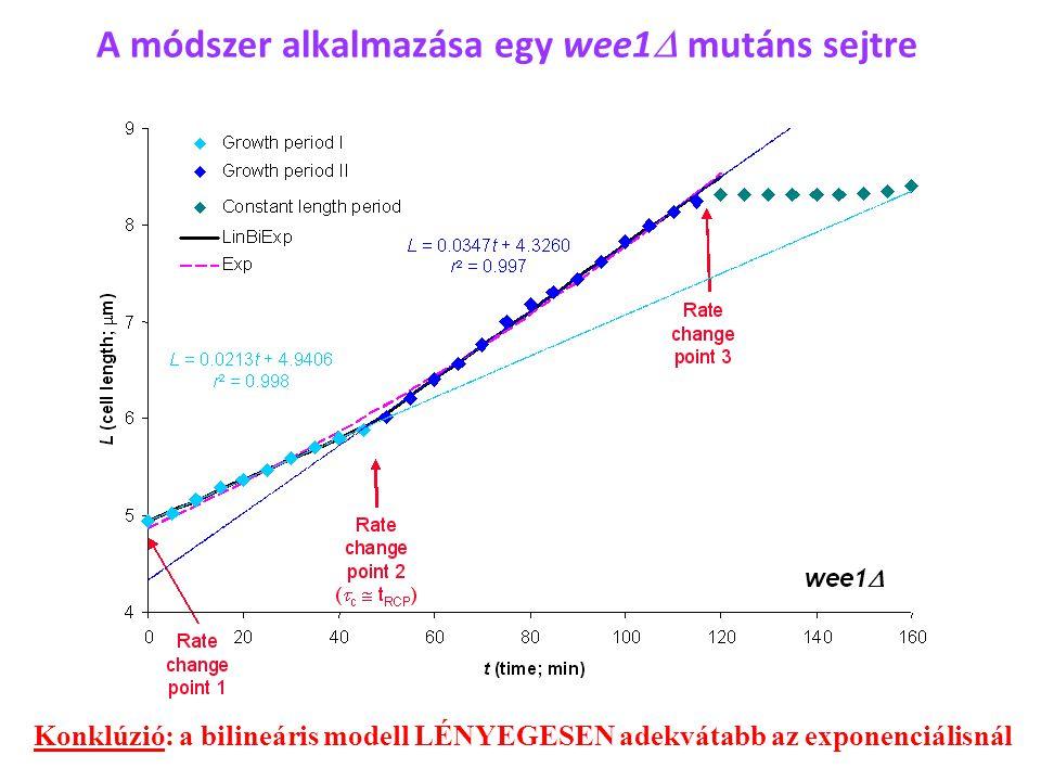 A módszer alkalmazása egy wee1D mutáns sejtre
