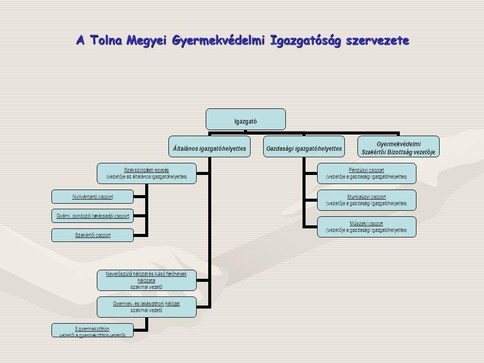 A Tolna Megyei Gyermekvédelmi Igazgatóság szervezete