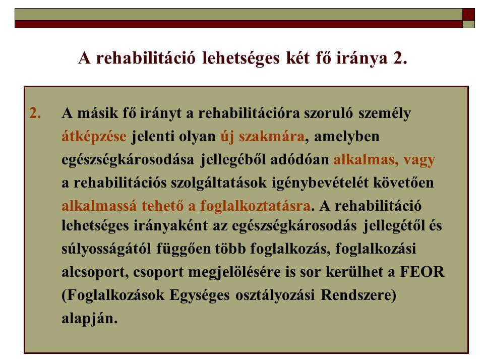 A rehabilitáció lehetséges két fő iránya 2.