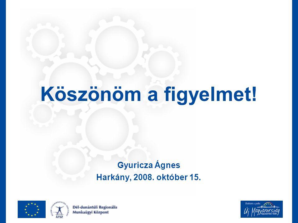 Köszönöm a figyelmet! Gyuricza Ágnes Harkány, 2008. október 15.