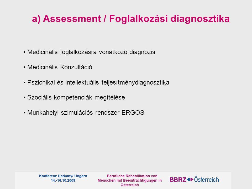 a) Assessment / Foglalkozási diagnosztika