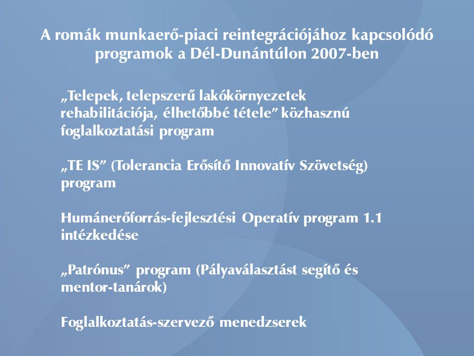 A romák munkaerő-piaci reintegrációjához kapcsolódó programok a Dél-Dunántúlon 2007-ben