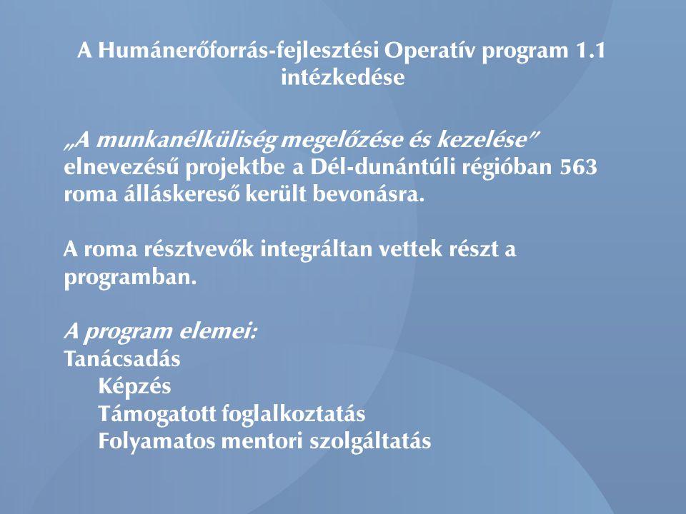 A Humánerőforrás-fejlesztési Operatív program 1.1 intézkedése