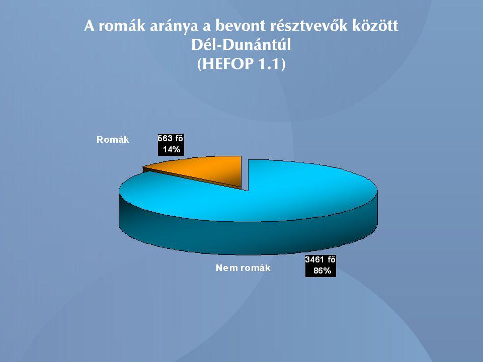 A romák aránya a bevont résztvevők között Dél-Dunántúl (HEFOP 1.1)