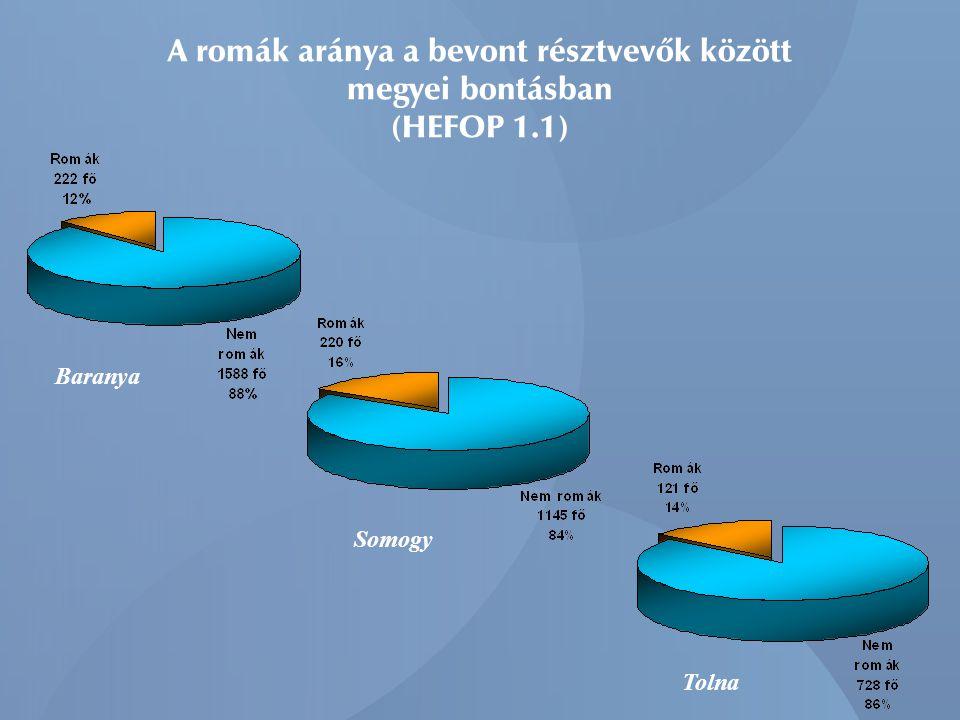 A romák aránya a bevont résztvevők között megyei bontásban (HEFOP 1.1)