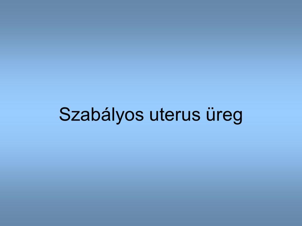 Szabályos uterus üreg