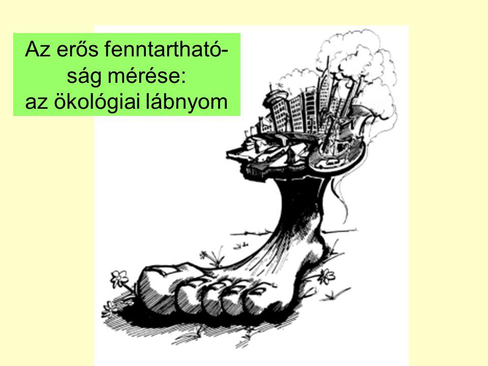 Az erős fenntartható-ság mérése: az ökológiai lábnyom
