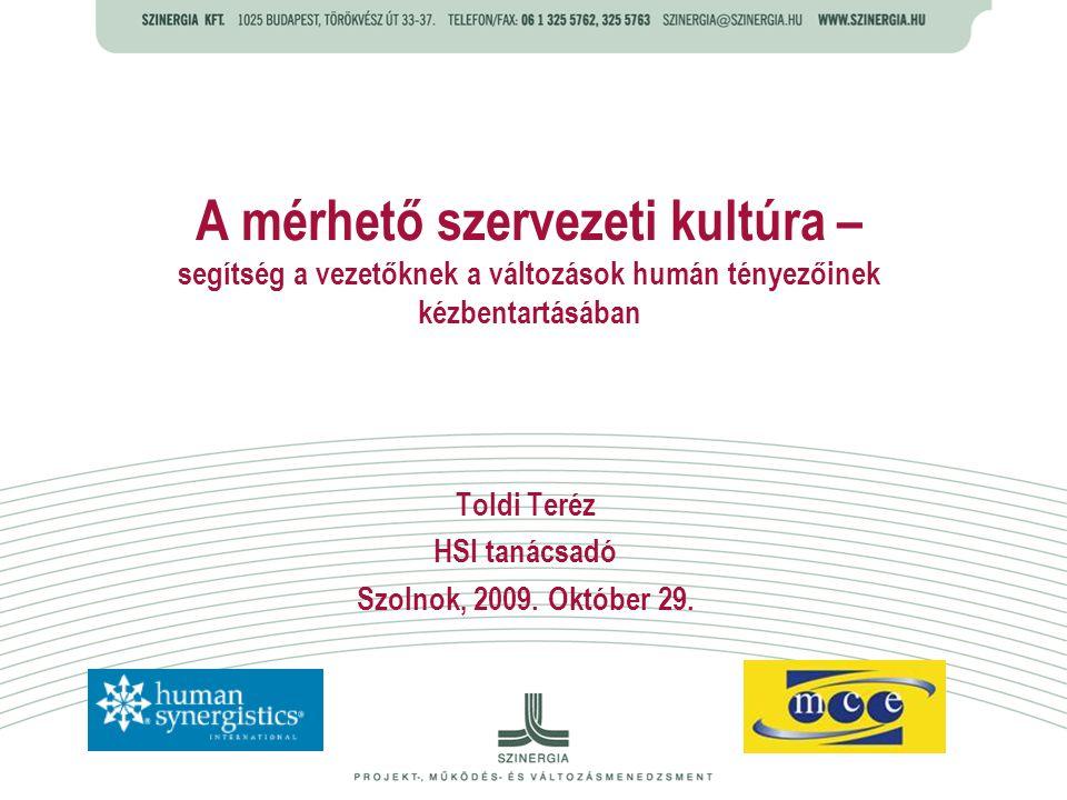 Toldi Teréz HSI tanácsadó Szolnok, 2009. Október 29.