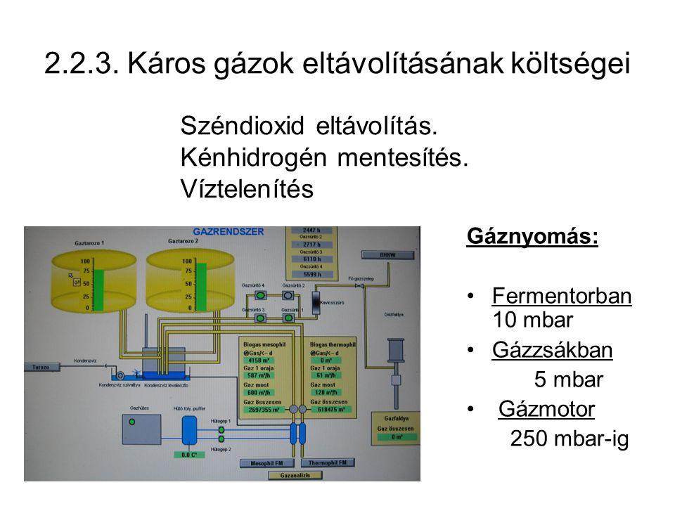 2.2.3. Káros gázok eltávolításának költségei