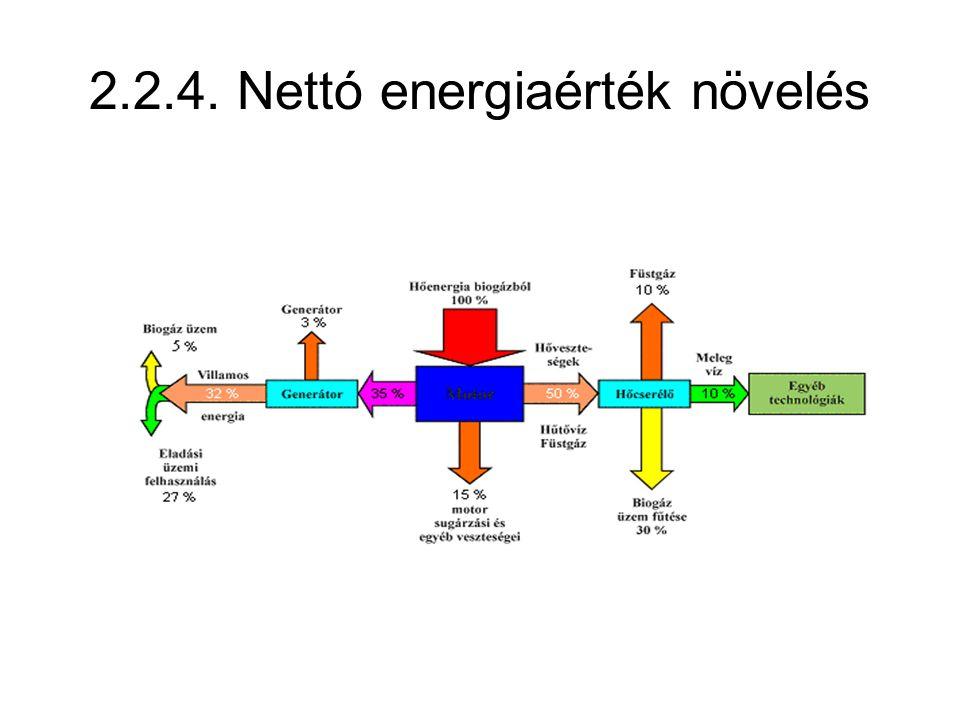 2.2.4. Nettó energiaérték növelés