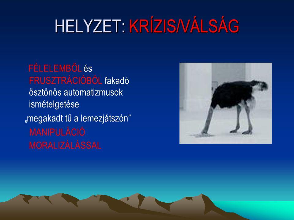 HELYZET: KRÍZIS/VÁLSÁG