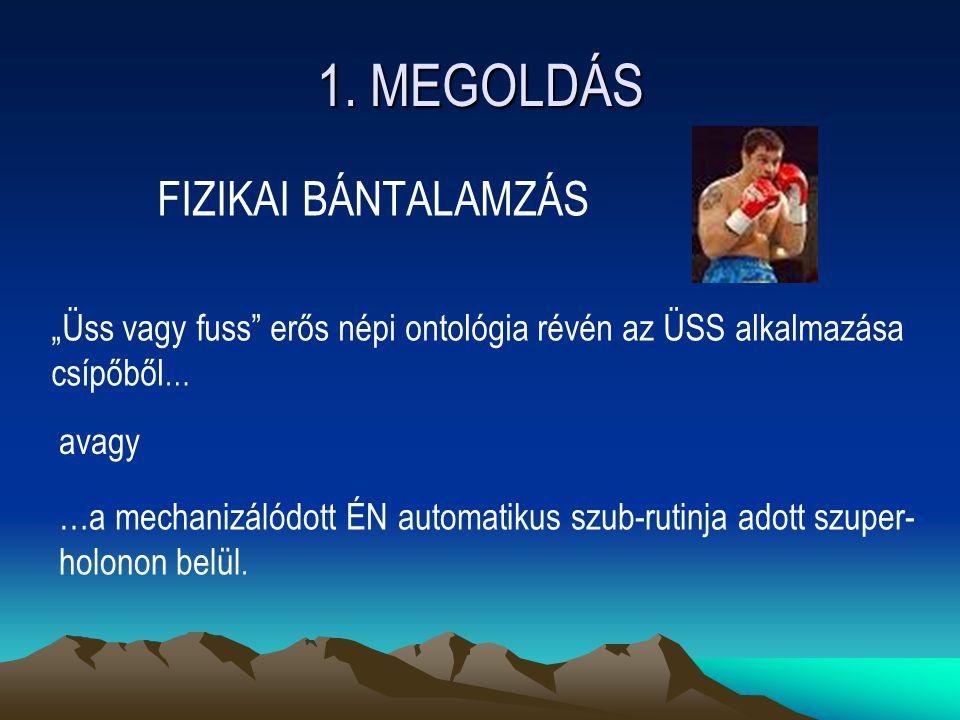 1. MEGOLDÁS FIZIKAI BÁNTALAMZÁS
