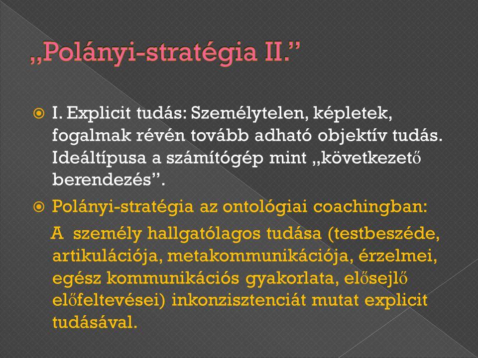 """""""Polányi-stratégia II."""