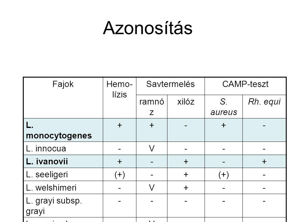 Azonosítás Fajok Hemo-lízis Savtermelés CAMP-teszt ramnóz xilóz