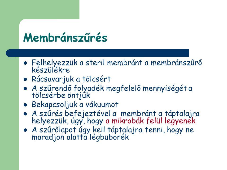 Membránszűrés Felhelyezzük a steril membránt a membránszűrő készülékre
