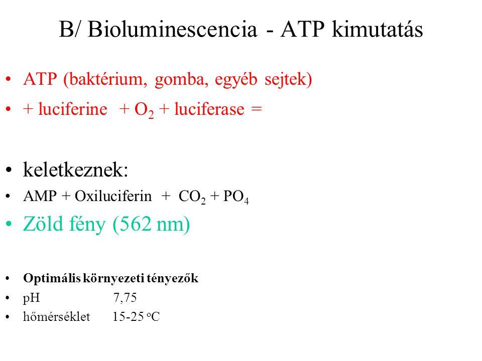 B/ Bioluminescencia - ATP kimutatás
