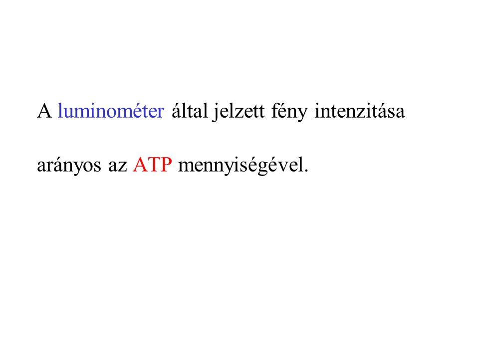 A luminométer által jelzett fény intenzitása arányos az ATP mennyiségével.