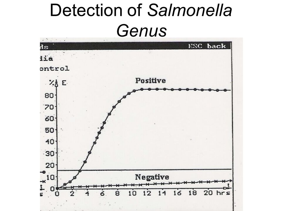 Detection of Salmonella Genus