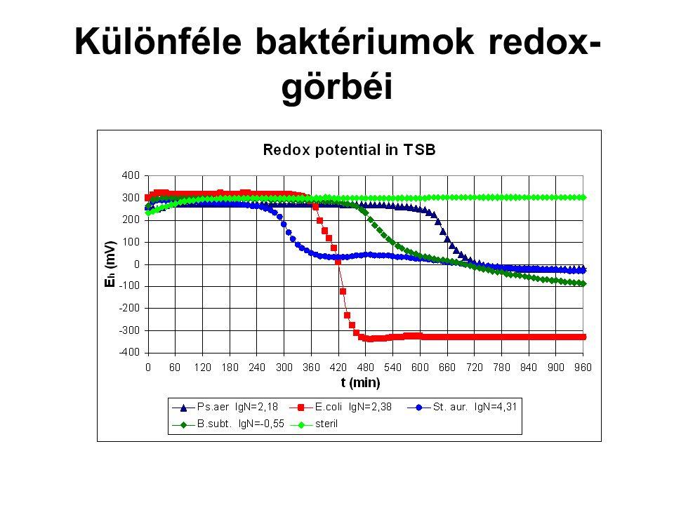 Különféle baktériumok redox-görbéi