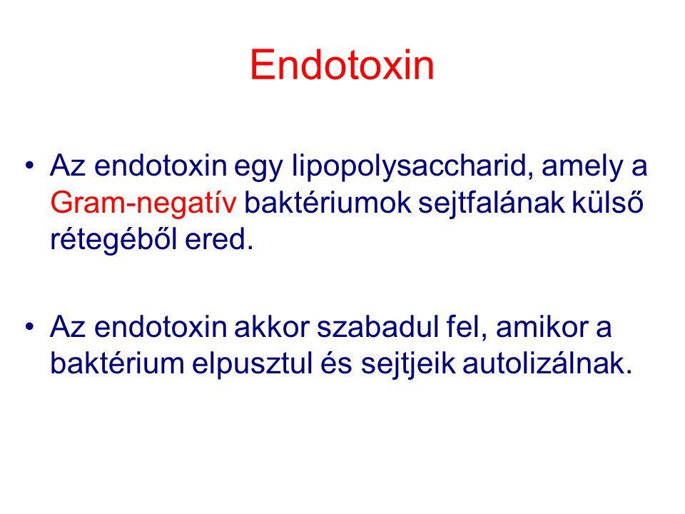 Endotoxin Az endotoxin egy lipopolysaccharid, amely a Gram-negatív baktériumok sejtfalának külső rétegéből ered.