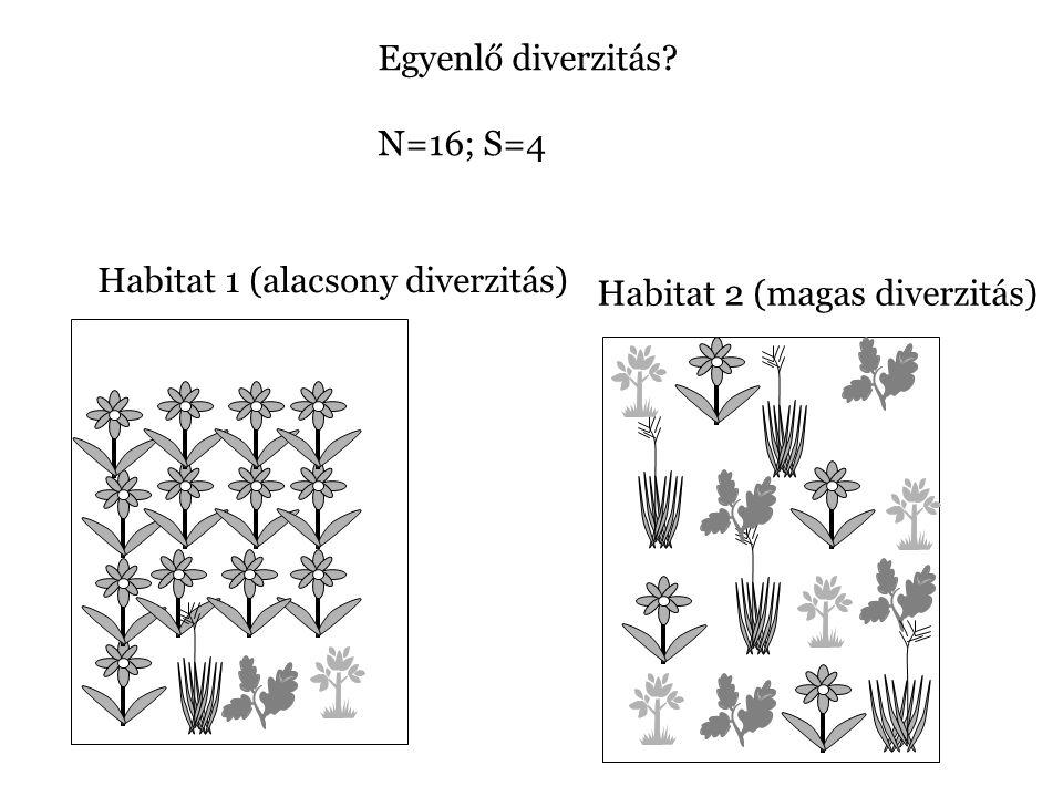 Egyenlő diverzitás N=16; S=4 Habitat 1 (alacsony diverzitás) Habitat 2 (magas diverzitás)