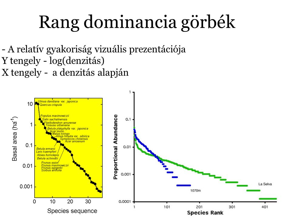 Rang dominancia görbék