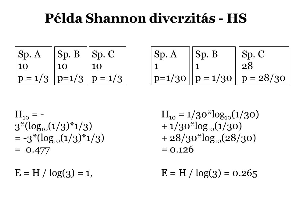 Példa Shannon diverzitás - HS