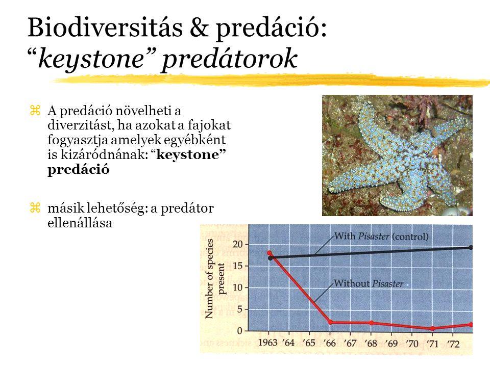 Biodiversitás & predáció: keystone predátorok