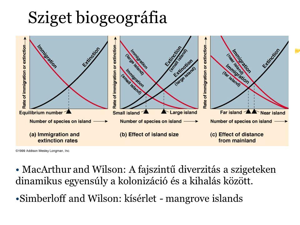 Sziget biogeográfia MacArthur and Wilson: A fajszintű diverzitás a szigeteken dinamikus egyensúly a kolonizáció és a kihalás között.