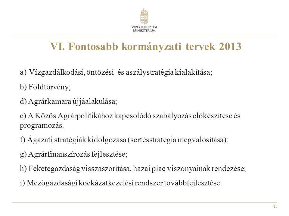 VI. Fontosabb kormányzati tervek 2013
