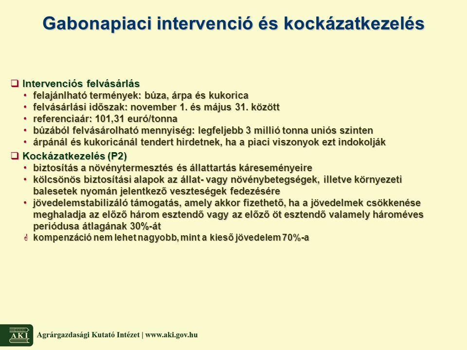 Gabonapiaci intervenció és kockázatkezelés