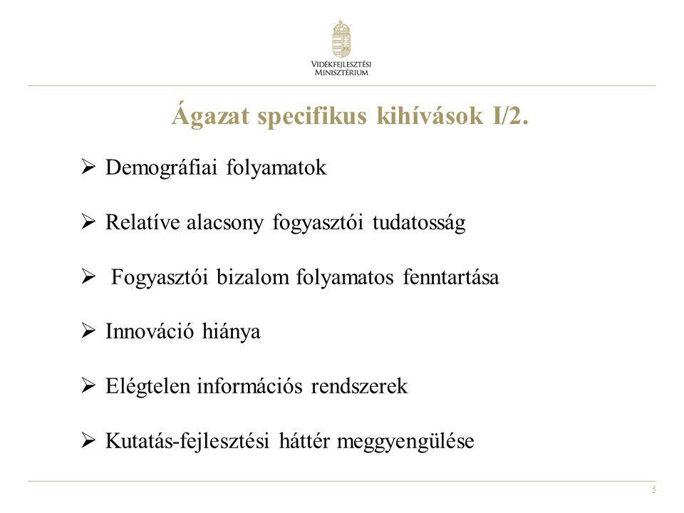 Ágazat specifikus kihívások I/2.