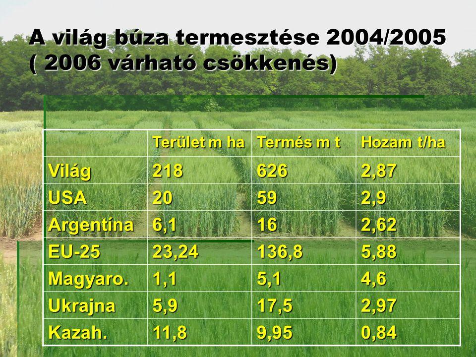 A világ búza termesztése 2004/2005 ( 2006 várható csökkenés)