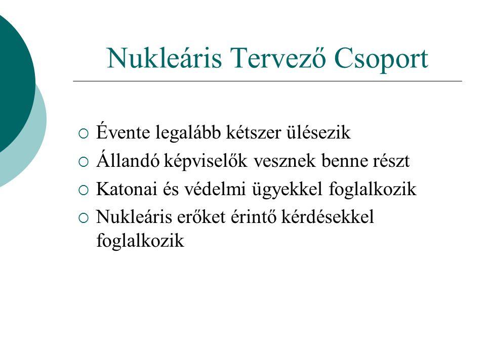 Nukleáris Tervező Csoport