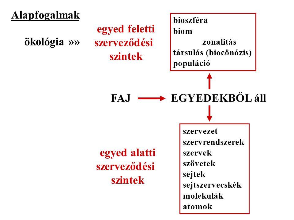 Alapfogalmak egyed feletti szerveződési szintek ökológia »» FAJ