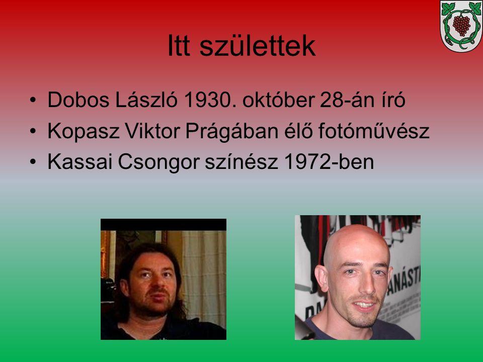 Itt születtek Dobos László 1930. október 28-án író