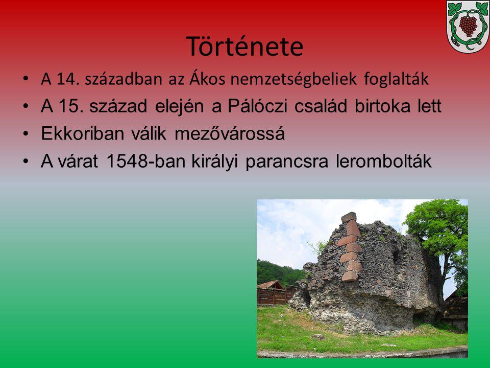Története A 14. században az Ákos nemzetségbeliek foglalták