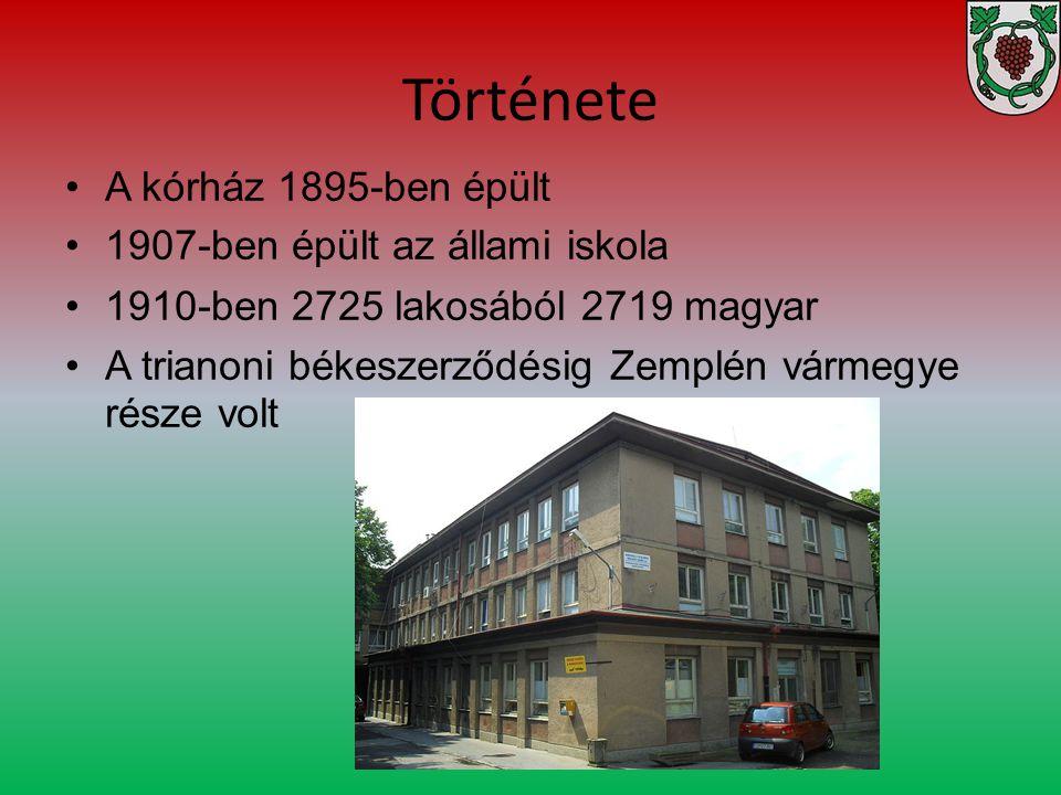 Története A kórház 1895-ben épült 1907-ben épült az állami iskola