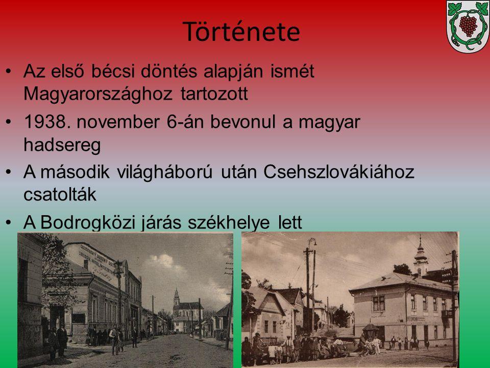 Története Az első bécsi döntés alapján ismét Magyarországhoz tartozott
