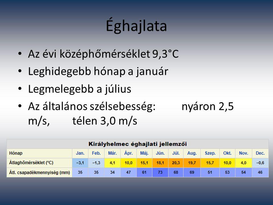 Éghajlata Az évi középhőmérséklet 9,3°C Leghidegebb hónap a január