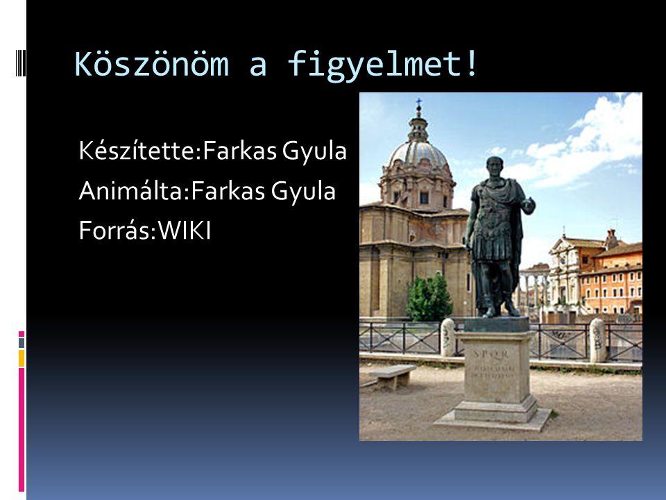 Köszönöm a figyelmet! Készítette:Farkas Gyula Animálta:Farkas Gyula Forrás:WIKI