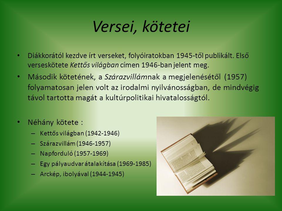 Versei, kötetei Diákkorától kezdve írt verseket, folyóiratokban 1945-től publikált. Első verseskötete Kettős világban címen 1946-ban jelent meg.