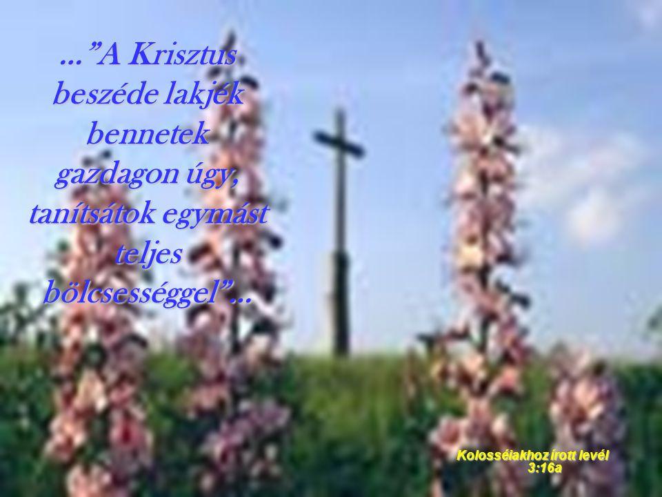 Kolosséiakhoz írott levél 3:16a