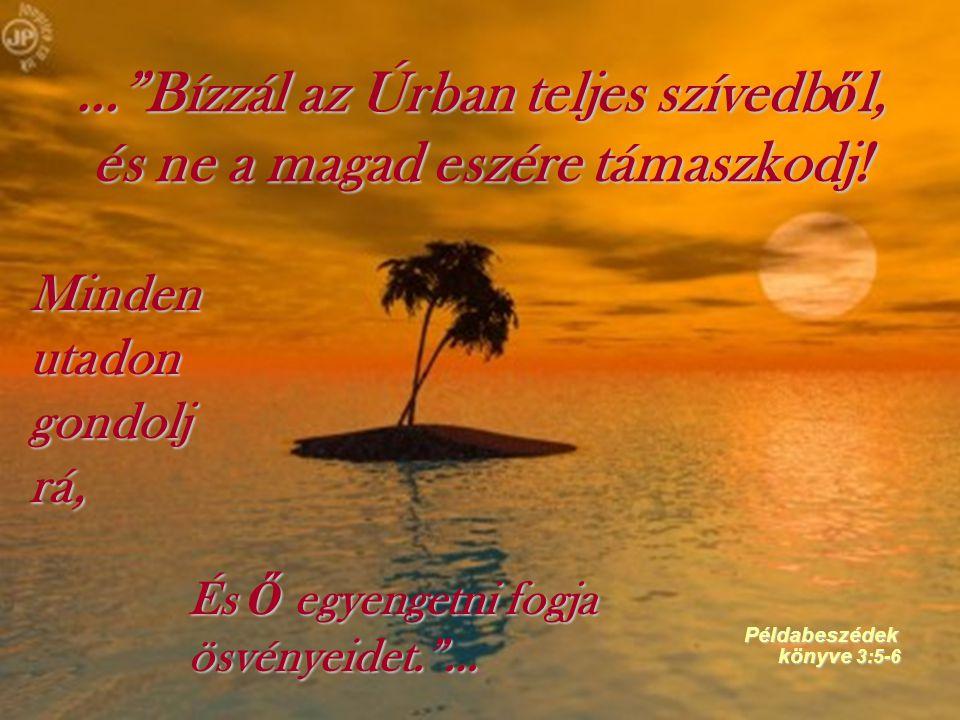 … Bízzál az Úrban teljes szívedből, és ne a magad eszére támaszkodj!