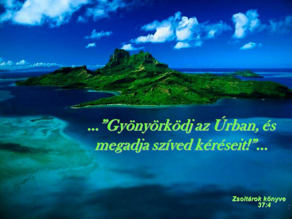 … Gyönyörködj az Úrban, és megadja szíved kéréseit! ...