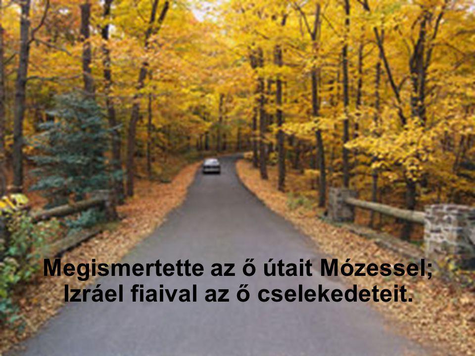 Megismertette az ő útait Mózessel; Izráel fiaival az ő cselekedeteit.